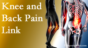 Manahawkin Chiropractic Center treats back pain and knee osteoarthritis to help avert falls.