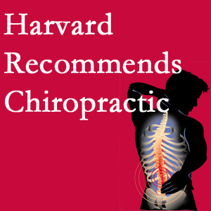 Manahawkin Chiropractic Center offers chiropractic care like Harvard recommends.