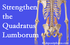 Manahawkin chiropractic care proposes exercise recommendations to strengthen spine muscles like the quadratus lumborum as the back heals and recovers.